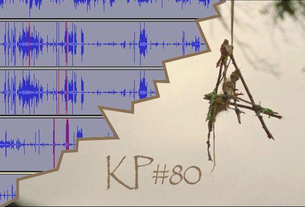 KP #80: Sticks Karla Edwarda Wagnera
