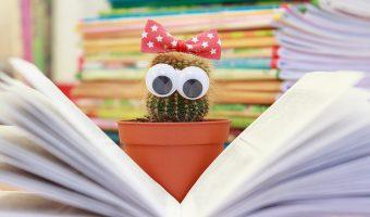 czytajacy-kaktus